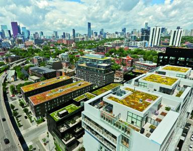 At BAU 2019, ZinCo will demonstrate how to build innovative green roofs. Our example shows the River City condos, Toronto, Canada. Source: ZinCo Canada