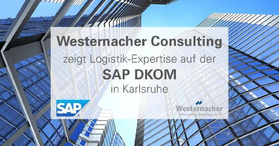 SAP-DKOM-PM.png