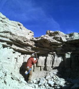 Figure 5. Lithium bearing clay stones at Clayton Valley, Nevada