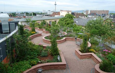 Nach der Gebäudeaufstockung und Neuanlage des Dachgartens im Jahre 2008, präsentiert sich dieser heute in gewohnt prachtvollem Glanz.