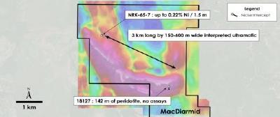 Abbildung 5 - Draufsicht auf die MacDiarmid-Liegenschaft - Historische Bohrungen mit Überlagerung der gesamten magnetischen Feldstärke, MacDiarmid Township, Ontario