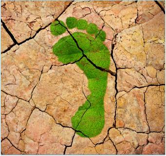 Der CO2-Fußabdruck von Produkten wird immer wichtiger. Um Greenwashing-Vorwürfen entgegen zu wirken, ist eine fundierte Berechnung nach den relevanten Standards ISO 14040/44 und ISO 14067 erforderlich