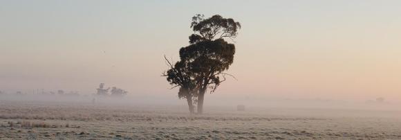 Zwei Unternehmen mischen den australischen Bergbau auf!