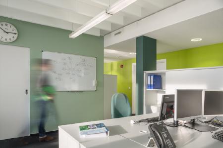 """Vom Schreibtisch aus hat jeder Beschäftigte eine grüne Wand im Blickfeld. Die übrigen Wände sind in einem hellen Graugrün gehalten– diese Farbe beruhigt und sorgt für eine """"Farbpause"""" (Foto: Caparol Farben Lacke Bautenschutz/Blitzwerk.de)"""