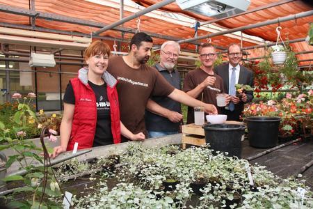 Gartenbau Hannover jäten pikieren pflanzen 20 jahre ausbildung zum helfer im