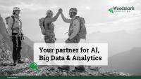Die Woodmark Consulting AG ist Ihr Partner für Analytics- & Big-Data-Beratung -- von Strategy, Governance, Planning, Architecture, Engineering, Cloud, Artificial Intelligence und Reporting bis IoT.