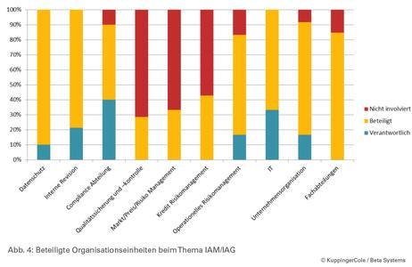 (Abbildung 4) Beteiligte Organisationseinheiten beim Thema IAM/IAG