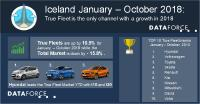 Passenger Car Market Iceland: True Fleet is the only channel with a growth in 2018