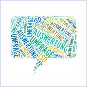 Auswertung der Umfrage zur ISO 9001:2015
