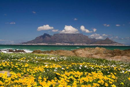 Auswirkungen der Fußball-Weltmeisterschaft: Flugreisen nach Kapstadt werden deutlich häufiger gebucht als im noch im Vorjahr. Foto: Opodo Ltd. Deutschland