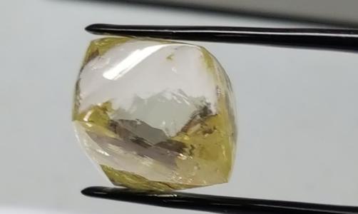 43karätiger, gelber Diamant; Foto: Lucapa Diamond