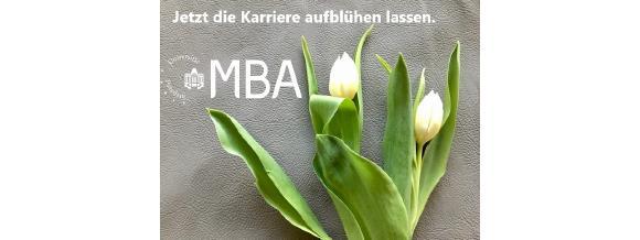MBA Potsdam