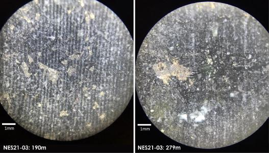 Canada Nickel Expands New Nesbitt Nickel Discovery by 1.8 kilometres / Microscope photos at 190 and 279 metres