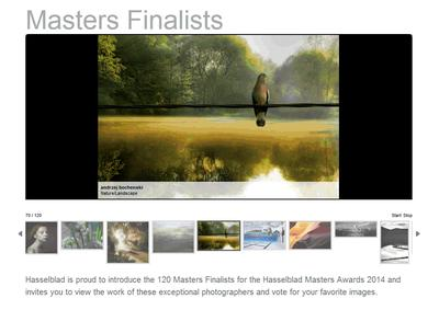 Shortlist now online after record Hasselblad Masters Entry