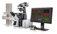 Olympus scanR 3.1 - AI Meets Live Cell Imaging