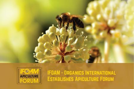 Organic Beekeeping Enjoys International Backing