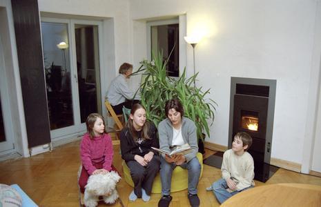 Für die Raumheizung im energetisch sanierten Altbauhaus sorgt ein Pellet-Wohnraumofen in Verbindung mit einer Solarwärmeanlage.