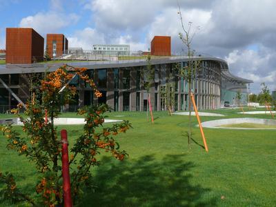 Das geneigte Dach des Verwaltungsgebäudes SOLON SE in Berlin-Adlershof bietet auf 3000 m² nutzbare Grünflächen und Terrassen für seine Mitarbeiter.