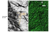 Aurania Identifies Another Possible Ancient Road in LiDAR Data