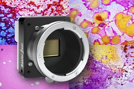 Die Kamera erlaubt schnelle, hochauflösende und farbgenaue Aufnahmen mit kurzen Belichtungszeiten für maximalen Probenschutz