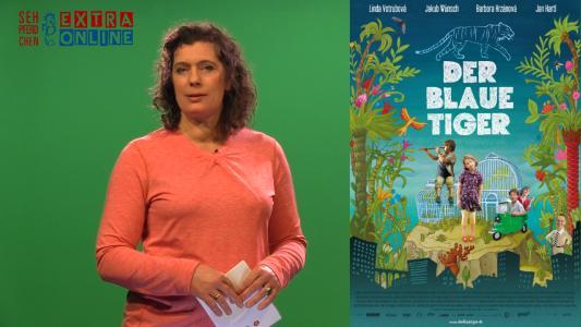 Führt ins Programm und gibt Anregungen für den Unterricht: Filmpädagogin Eva-Maria Schneider-Reuter (Quelle: Medienzentrum Region Hannover)