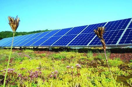 """Der ZinCo-Systemaufbau """"SolarVert"""" ermöglicht die Kombination von Solaranlagen mit Dachbegrünung - für wertvolle Synergieeffekte!"""