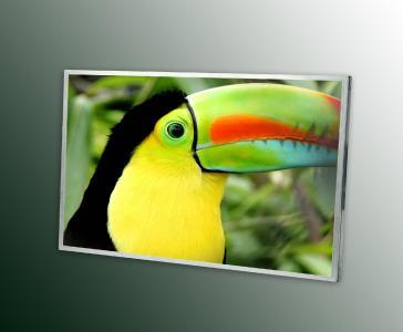 LG Display Wide Screen Displays
