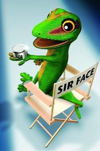 Sir Face, der Regisseur