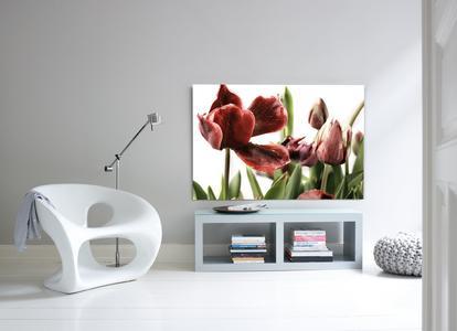 gallery print das lieblingsfoto als ausstellungsst ck cewe stiftung co kgaa pressemitteilung. Black Bedroom Furniture Sets. Home Design Ideas