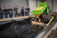 Miniaturenten beim Start des 1. Erfurter Miniatur-Entenrennens (c)Michael Kremer/SnapArt