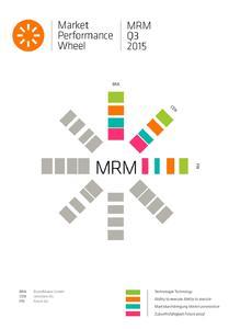 Laut LNC bildet BrandMaker mit MAM, PIM und MRM gleich drei wesentliche Kompetenzfelder im Information Supply Chain Management (ISCM) ab