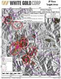 WGO-JP Ross Vertigo Target