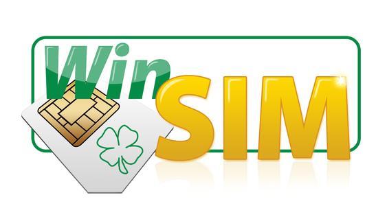Logo Winsim