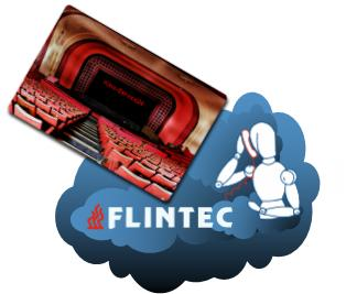 flintec wolke services