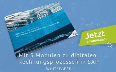 HENRICHSEN AG erklärt, wie man mit fünf Modulen digitale Rechnungsprozesse in SAP aufsetzt / Abb: HAG
