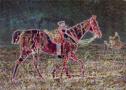Pferd.