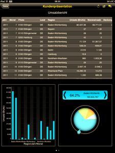 SAP BO Explorer (Business Objects) holt Absatz- und Vertriebsreport auf den iPad.