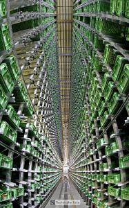 Implementierung während des laufenden Betriebs: 60.000 zusätzliche Behälterstellplätze im DPS und OCB. Foto: WITRON
