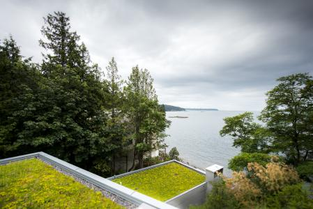 The multi-component building presents wonderful extensive green roofs at different altitudes / Source: Brett Ryan Studios, Vancouver