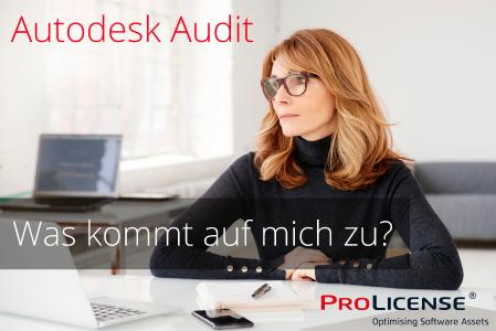 Autodesk Audit - Autodesk Lizenzaudit - Was kommt auf mich zu?