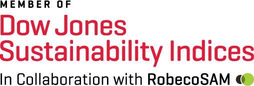 Bild DJSI Member Logo