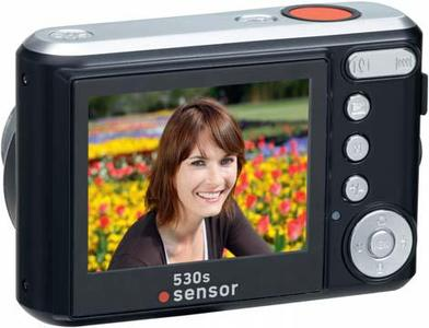 sensor 530s