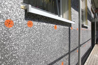 Außen Dalmatiner, dazwischen Polyurethan: Mit der neuen Fassadendämmplatte (Foto : Caparol Farben Lacke Bautenschutz/Claus Graubner)