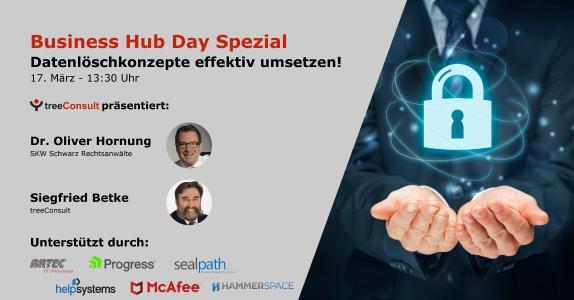 Business Hub Day ONLINE Spezial von treeConsult