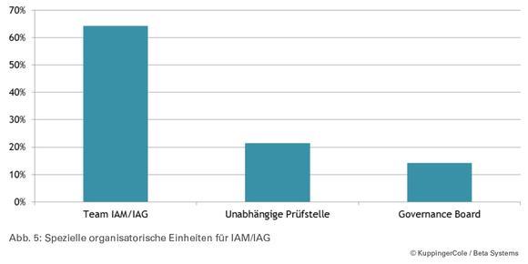 (Abbildung 5) Spezielle organisatorische Einheiten für IAM/IAG