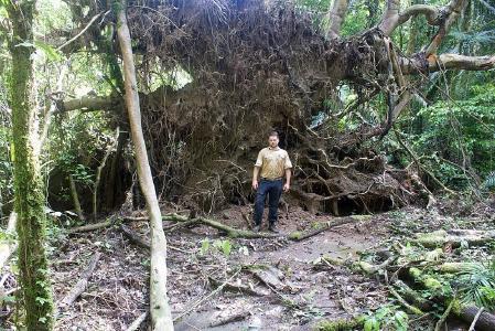 Micah Dunthorn sammelte im Regenwald Bodenproben ein / Foto: Micah Dunthorn/TU Kaiserslautern