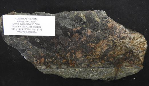 Erz vom Copperhead-Projekt / Foto: Goliath Resources