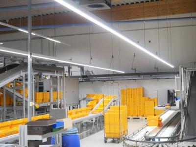 Eine bessere Ausleuchtung der Warenlager mit zugleich weniger Energieaufwand für Beleuchtung und Klimatisierung: Dies bildete den Ausgangspunkt für die Sanierung der Leuchten bei Alliance Healthcare am Standort Osnabrück / Foto: Emslicht