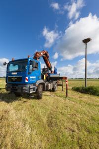 Die WEMAG unterstützt die Beringungsaktion jedes Jahr mit einer Hubbühne und Mitarbeitern / Foto: WEMAG/Stephan Rudolph-Kramer