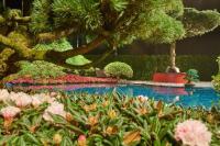 Blick ins Grüne: Im Schaugarten von Reinhold Borsch können die Besucherinnen und Besucher den Messetrubel für einen Moment vergessen (Foto: Matthias Schütz)